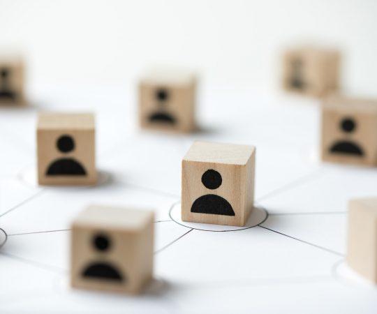 Sinergia Le Alleanze (Network)